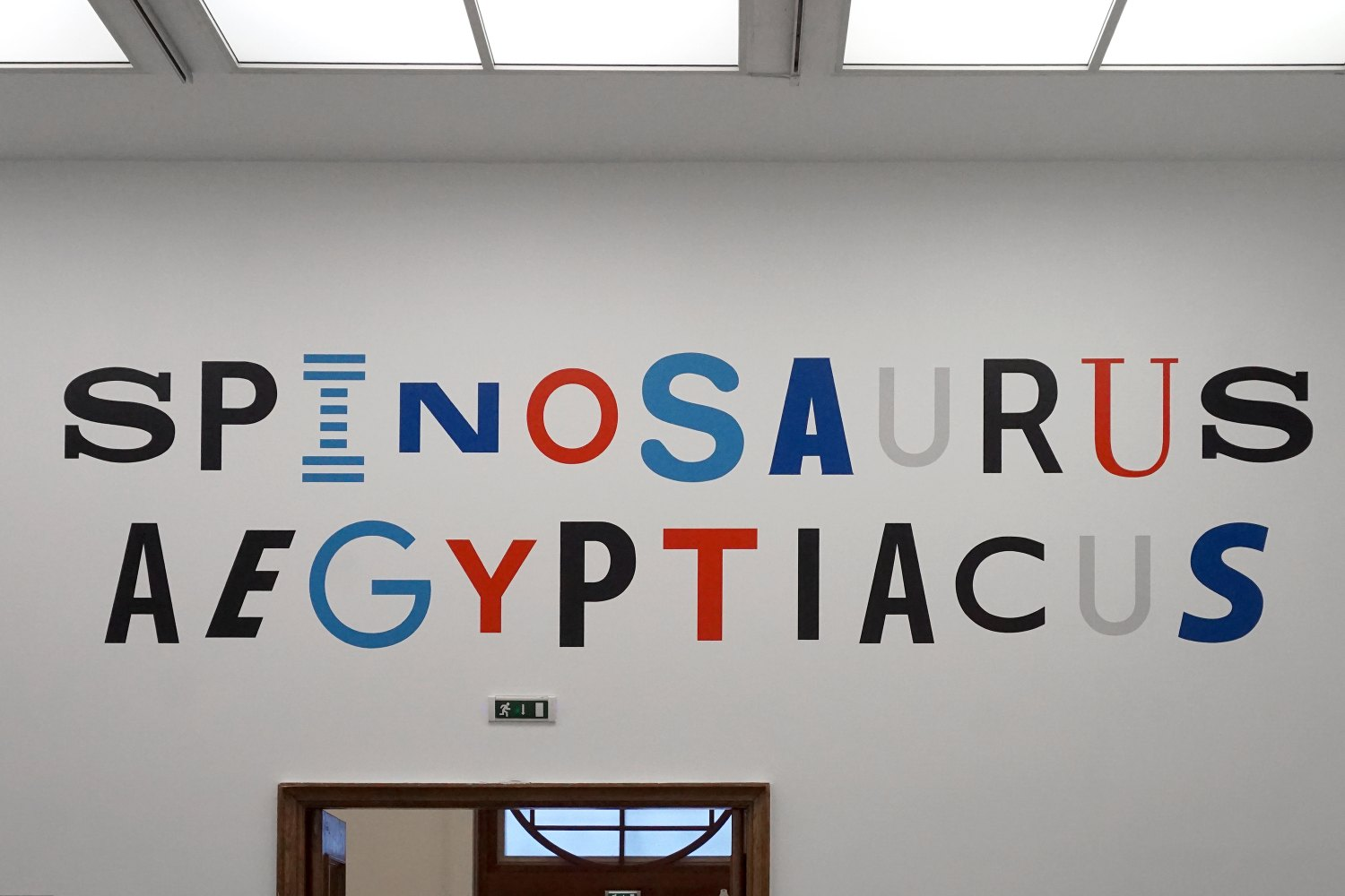 Sean Snyder Spinosaurus Aegyptiacus (Visual Identity), 2018 Painted wall (RAL 3020, RAL 5012, RAL 5017, RAL 7047, RAL 9017), 135 x 500 cm