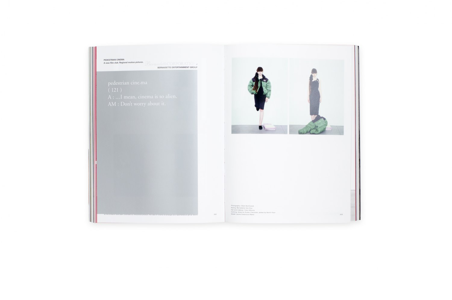 Bernadette Corporation, 2000 Wasted Years  ed. by Bernadette Corporation, Cologne 2014, 400 p. ISBN 978-3-86335-569-2