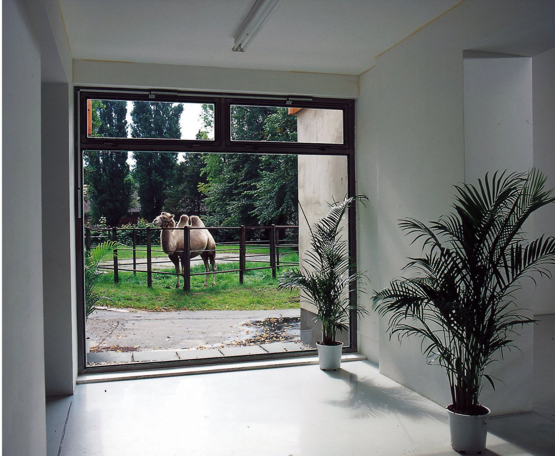 Cerith Wyn Evans  Untitled, 2000    C-print, framed  50.3 × 63.8 cm