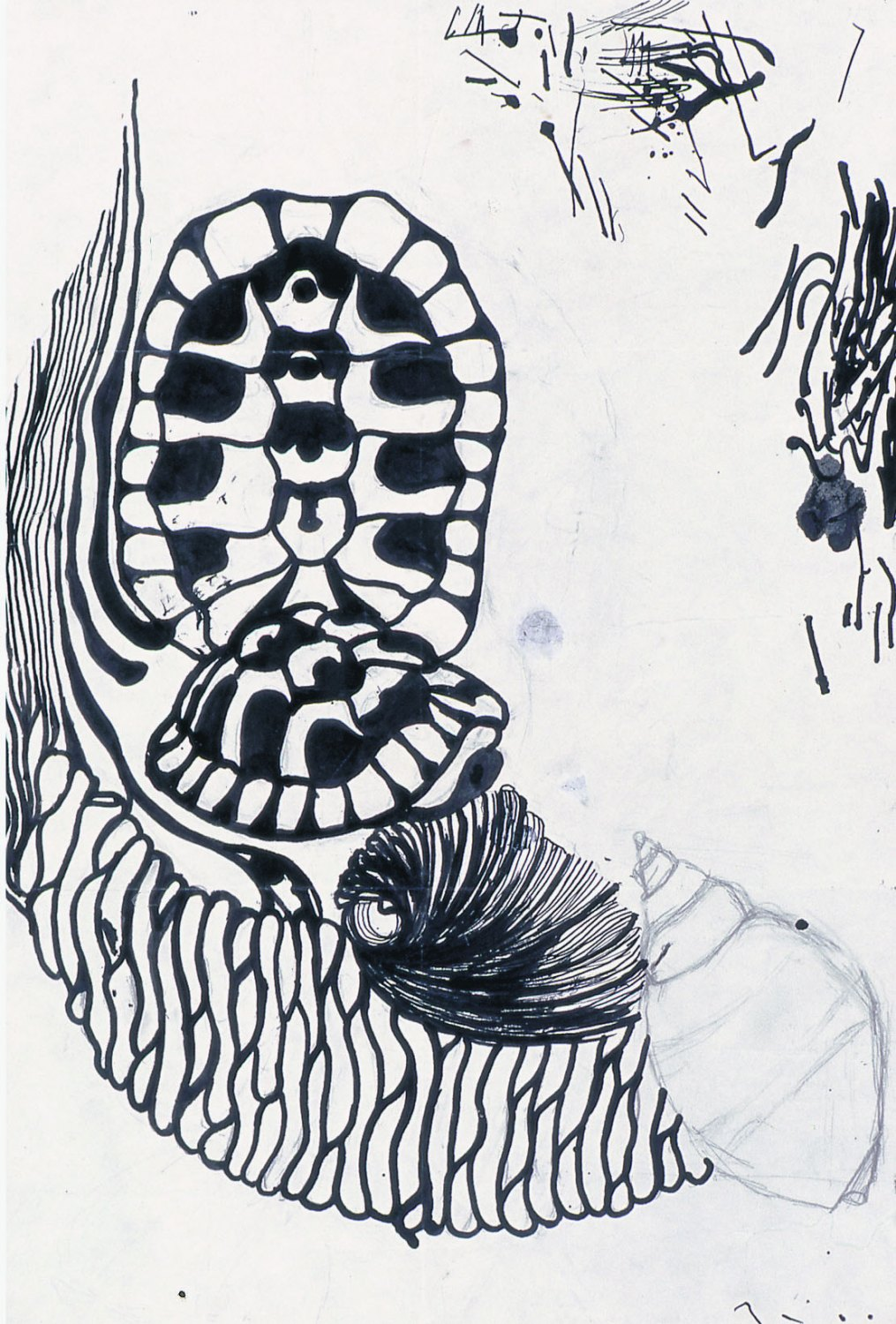 Ull Hohn Untitled, 1978,  Ink on paper, 41.91 × 27.94 cm